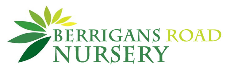 Berrigans Road Nursery
